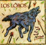 A Matter Of Time sheet music by Los Lobos
