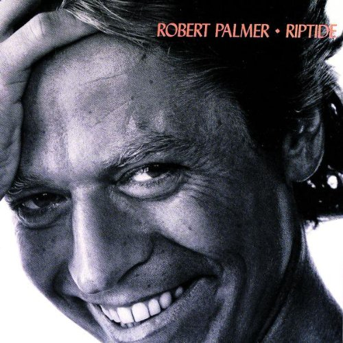 Robert Palmer I Didn't Mean To Turn You On cover art