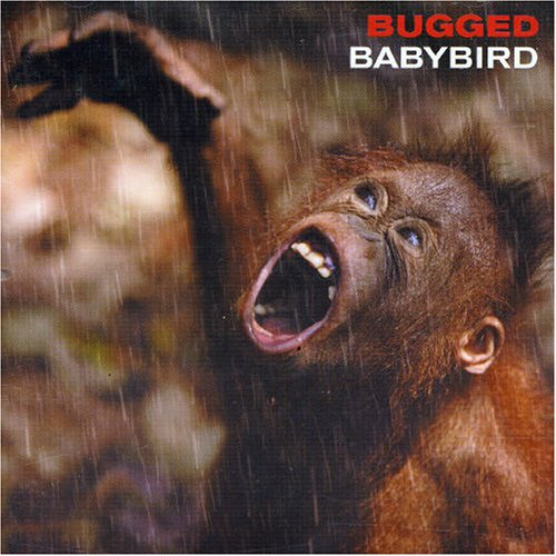 Babybird Fireflies cover art