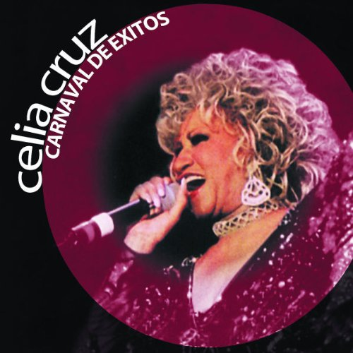 Celia Cruz Usted Abuso cover art