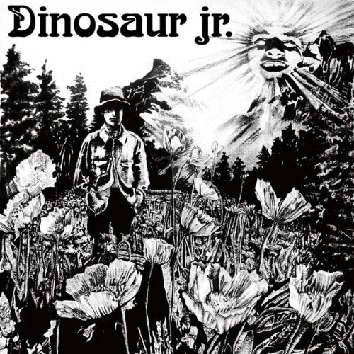 Dinosaur Jr. Forget The Swan cover art