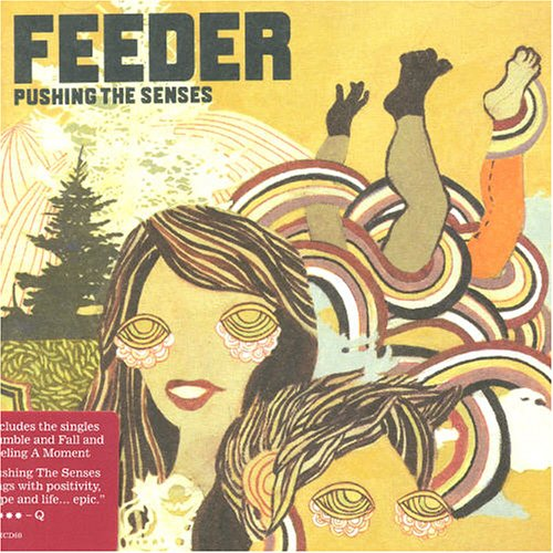 Feeder Feeling A Moment cover art