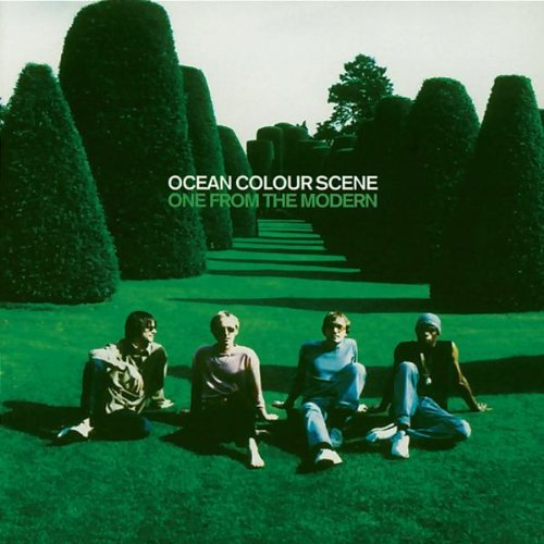 Ocean Colour Scene I Won't Get Grazed cover art