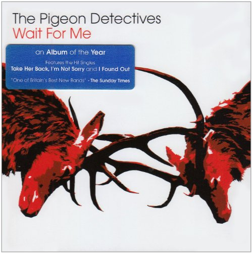 The Pigeon Detectives Wait For Me cover art