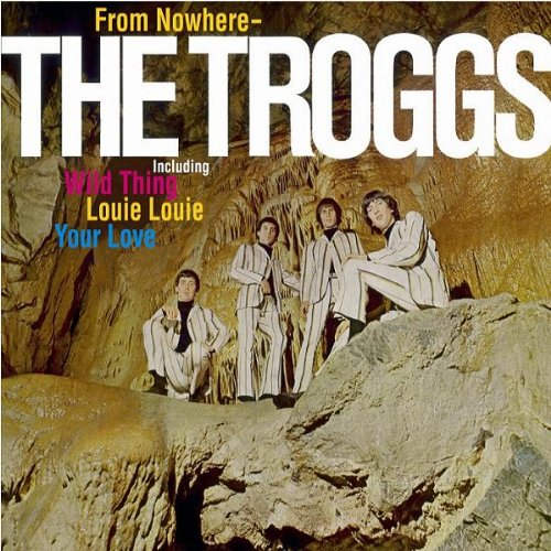 The Troggs Wild Thing cover art