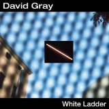David Gray: Nightblindness