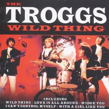 The Troggs With A Girl Like You cover art