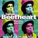 Captain Beefheart I'm Glad cover art