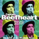 Captain Beefheart:I'm Glad