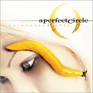 A Perfect Circle Lullaby cover art