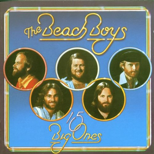 The Beach Boys The Night Was So Young cover art