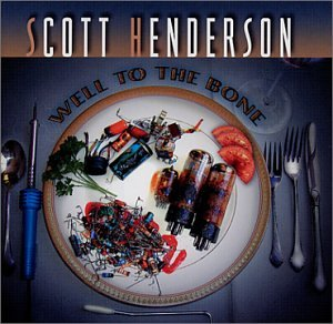 Scott Henderson Lady P cover art