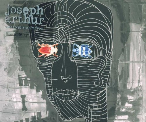 Joseph Arthur In The Sun cover art