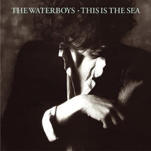 The Waterboys The Whole Of The Moon cover art