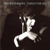 The Waterboys:The Whole Of The Moon
