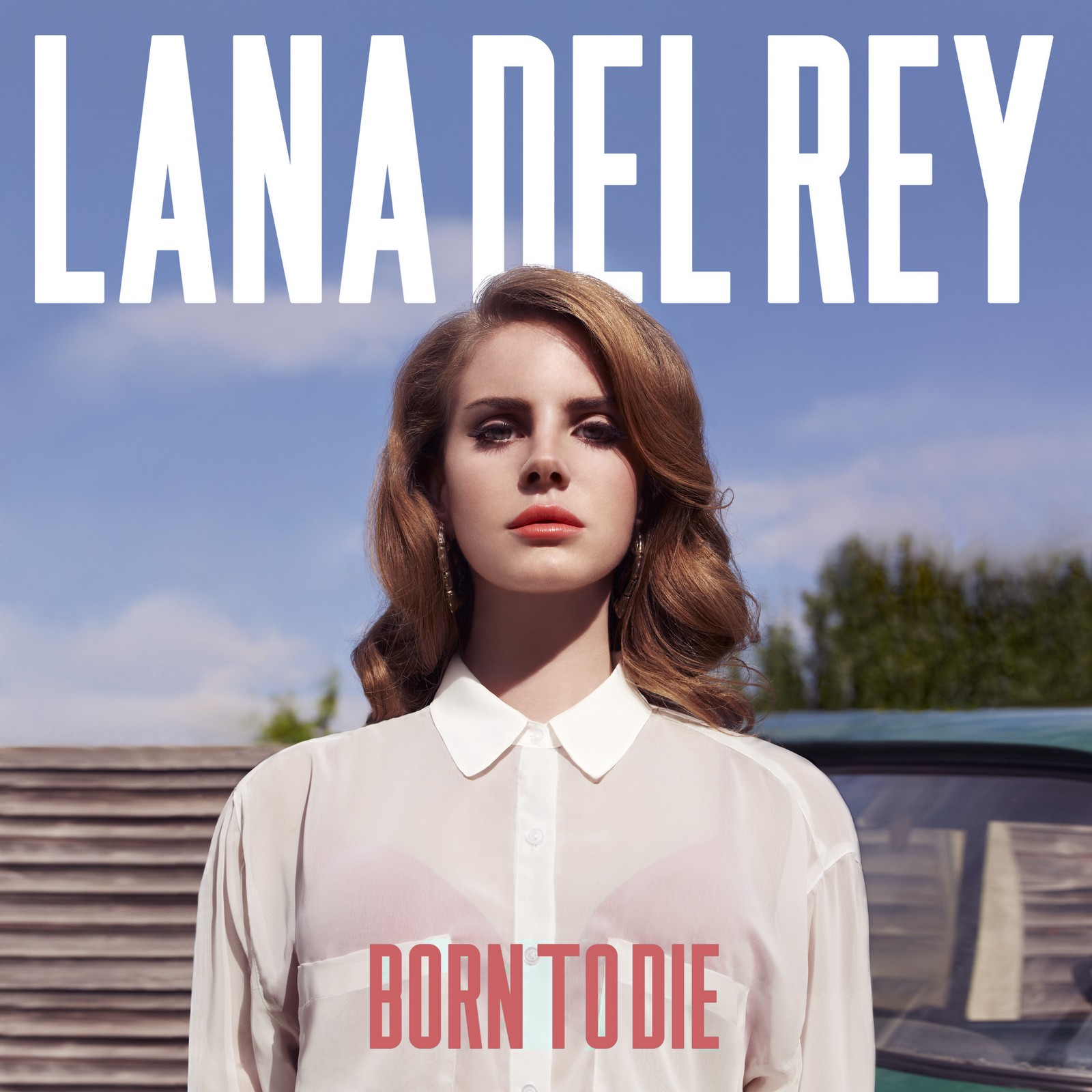 Lana Del Rey Summertime Sadness cover art