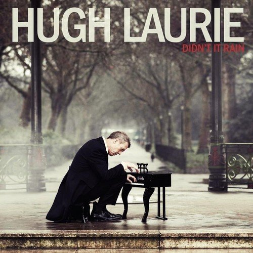 Hugh Laurie Didn't It Rain cover art