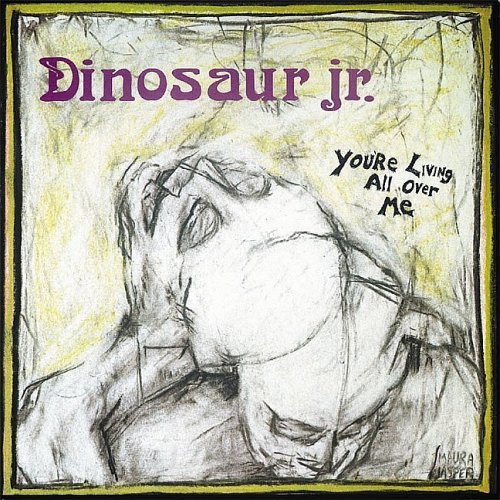 Dinosaur Jr. Little Fury Things cover art