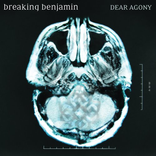 Breaking Benjamin Into The Nothing cover art