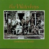 Fisherman's Blues sheet music by The Waterboys