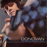 Donovan:Catch The Wind