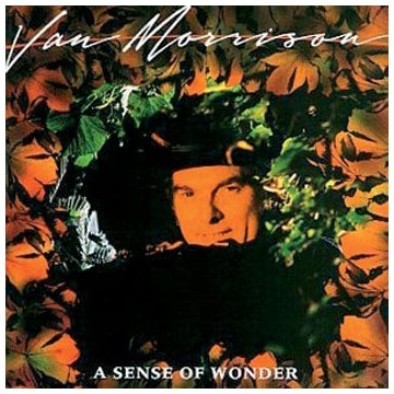 Van Morrison A Sense Of Wonder cover art