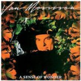 A Sense Of Wonder sheet music by Van Morrison