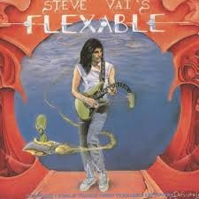 Steve Vai Burnin' Down The Mountain cover art