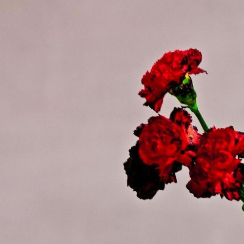 John Legend Made To Love cover art