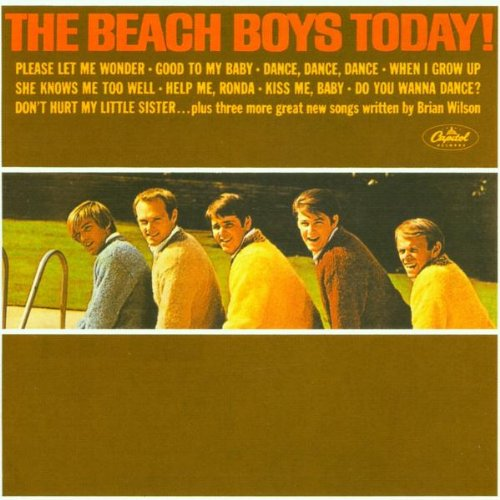 The Beach Boys Let Him Run Wild cover art