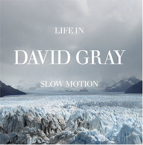 David Gray Slow Motion cover art