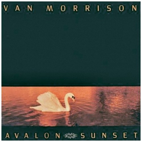 Van Morrison Whenever God Shines His Light cover art