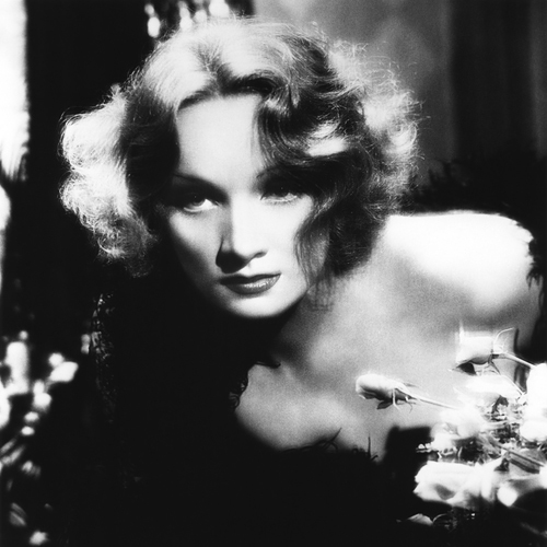 Marlene Dietrich Falling In Love Again cover art
