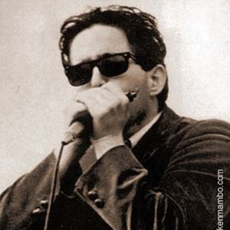 Paul Butterfield:Look On Yonder's Wall