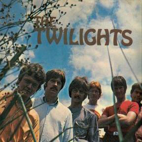 The Twilights Needle In A Haystack cover art