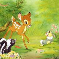 Love Is A Song (from Bambi II) sheet music by Donald Novis