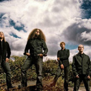 Coheed And Cambria: The Writing Writer