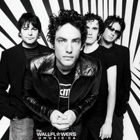 The Wallflowers:Empire In My Mind (from The Guardian)