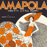 Amapola (Pretty Little Poppy) sheet music by Joseph M. Lacalle