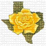 The Yellow Rose Of Texas sheet music by Traditional
