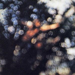 Pink Floyd Wot's...Uh The Deal? cover art