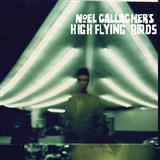 The Dying Of The Light sheet music by Noel Gallagher's High Flying Birds