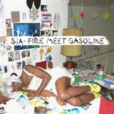 Sia - Fire Meet Gasoline