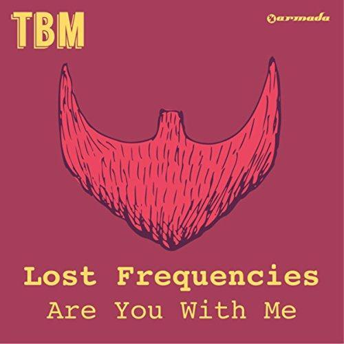 Lost Frequencies Are You With Me cover art