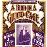 A Bird In A Gilded Cage sheet music by Maurice J. Gunsky