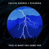 This Is What You Came For (feat. Rihanna) sheet music by Calvin Harris