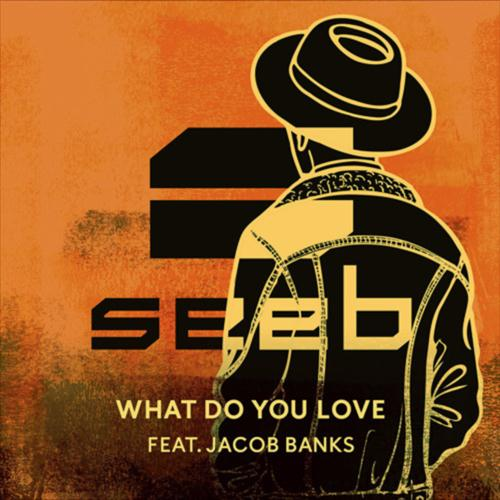 Seeb What Do You Love (feat. Jacob Banks) cover art