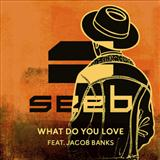 What Do You Love (feat. Jacob Banks) sheet music by Seeb