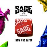 Now And Later sheet music by Sage the Gemini