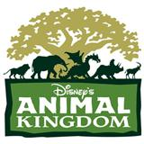 Tish Eastman:Animal Kingdom - Tree Of Life Theme (from Disney's Animal Kingdom Theme Park)